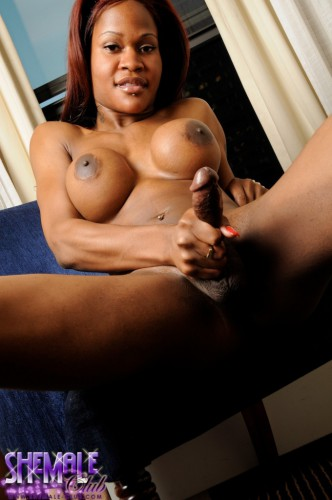 ebony shemale jerking cock hard